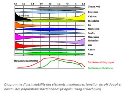 introduction l approche globale de l analyse de terre wiki aur a. Black Bedroom Furniture Sets. Home Design Ideas